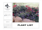 AUC New Campus Plant List